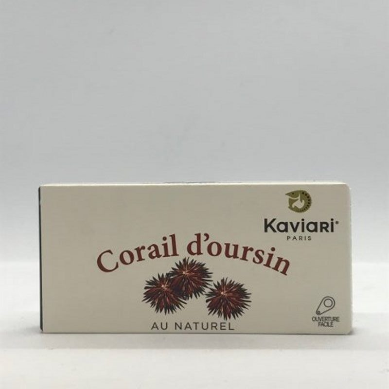 Corail d'Oursin
